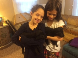 Bella & Abi & pups